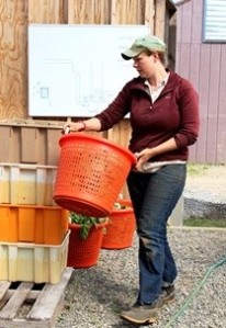 3708s_Liz ready to wash spring harvest