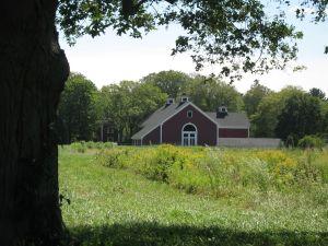 farm landscape - red barn