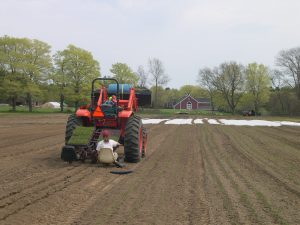 Transplanting seedlings in April 2011 (That's Amy driving and Rebekah planting!)