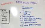 May 13 Farm Share on white board in Farm Shop