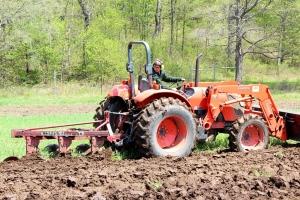 Tim plowing