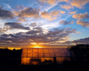 Sunset over the Moraine Farm greenhouse.