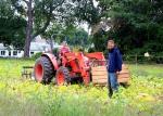 Harvesting Butternut